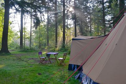 ochtendzonnetje op kampeerterrein de dennen